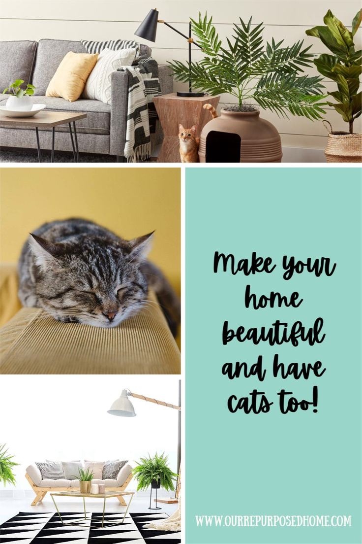 pretty cat furniture ideas to make your home beautiful